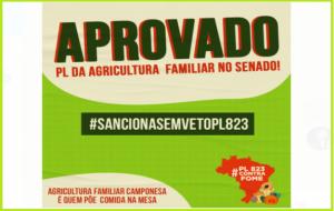 PL 823 (PL da Agricultura Familiar) é aprovado no Senado e agora segue para sanção presidencial. Comemoramos a vitória, mas nossa mobilização continua!